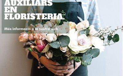 Curs activitats auxiliars en floristeria