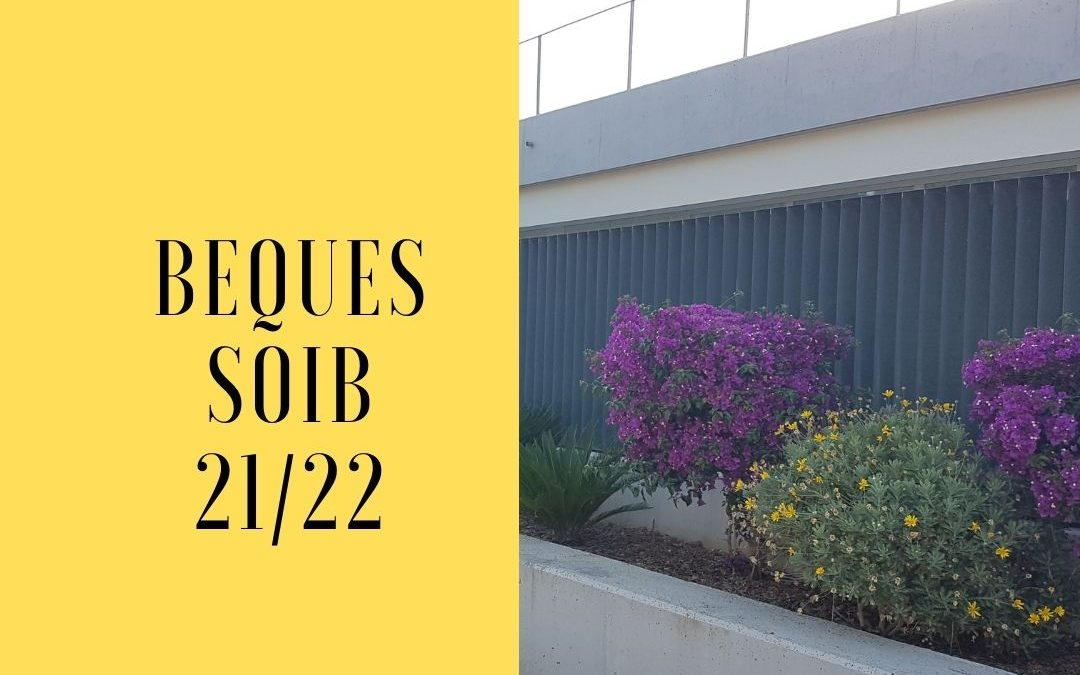 BEQUES SOIB CURS 21/22
